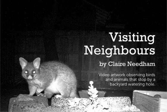 Visiting Neighbours_image